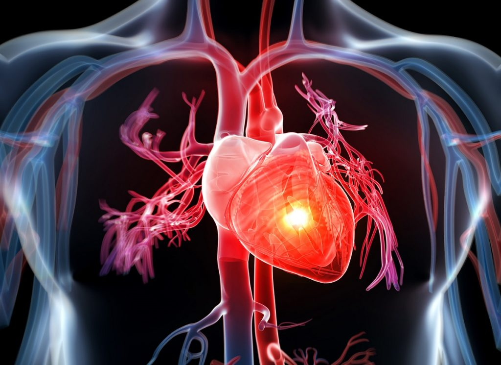 Heart Disease – Symptoms and Risk factors Associated with it